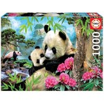 Morning Panda - 1000pc
