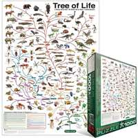 Evolution - the Tree Of Life