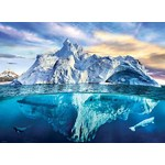 Save Our Planet - Arctic - 1000pc