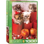 Kittens in Pots - 1000pc