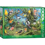 Garden Birds - Francis - 1000pc