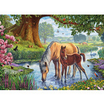 The Fell Ponies - 1000pc