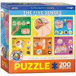 Five Senses - 200pc