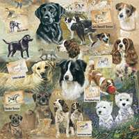 Faithful Companions - 1000pc