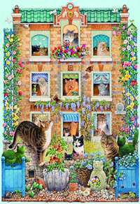 Peeping Tom - 500pc