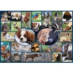 RSPCA - All Creatures Great and Small - 1000pc