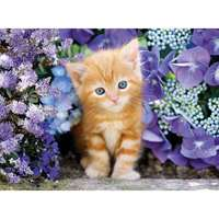 Ginger Cat in Flowers - 500pc