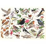 Birds in My Garden - 1000pc
