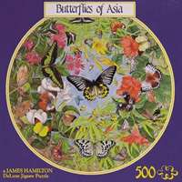 butterflies of asia