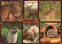 Autumn Watch - 1000pc