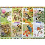 Seasonal Garden Birds - 1000pc