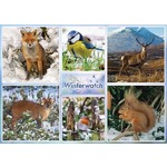 Winter Watch - 1000pc
