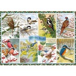 Winter Birds - 1000pc
