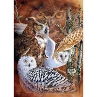 Find the Owls - 500pc