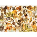 Dogs Poster - 1000pc