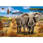 African Savannah - 500pc
