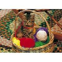 kitten in basket - big jig