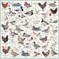 Madelein Floyd - Chickens, Ducks and Geese - 1000pc