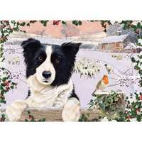 Border Collie From The Field - 1000pc