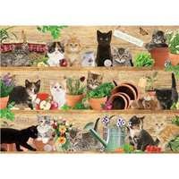 Mischievous Kittens - 1000pc