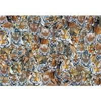 Impossible Puzzle - Tigers - 500pc