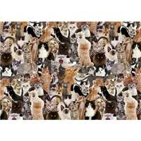 Impossible Puzzle - Funny Felines - 500pc