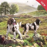 Spaniels on the Moor - 1000pc