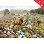 National Park - 1000pc