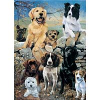 Mixed Dogs - The Look Out - 1000pc