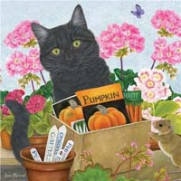 Black Cat - Pumpkin - 1000pc