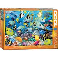 Ocean Colours - Robinson - 1000pc