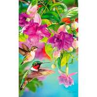 Hummingbirds - 1000pc