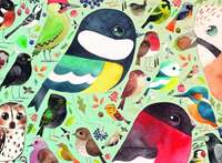 Our British Birds - Matt Sewell - 500pc