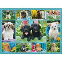 Cute Puppies - 500pc