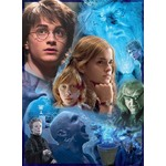 Harry Potter and the Goblet of Fire - 500pc