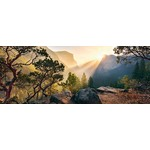 Yosemite Park - Panoramic - 1000pc