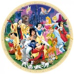 Wonderful World of Disney - 1000pc