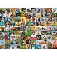 99 Funny Animals - 1000pc