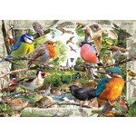 Our Feathered Friends - 1000pc