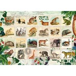 Wildlife Stamp Collection - 1000pc