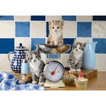 Cats in the Kitchen - 500pc