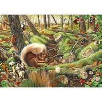 Save our Squirrels - 1000pc
