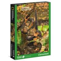 National Geographic - Chimpanzee - 1000pc